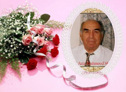 الجراح الاخصائي المبدع الدكتور عزيز محمود شكري علم عراقي شامخ شوخ نخيل العراق Aziz.M.SHK.1