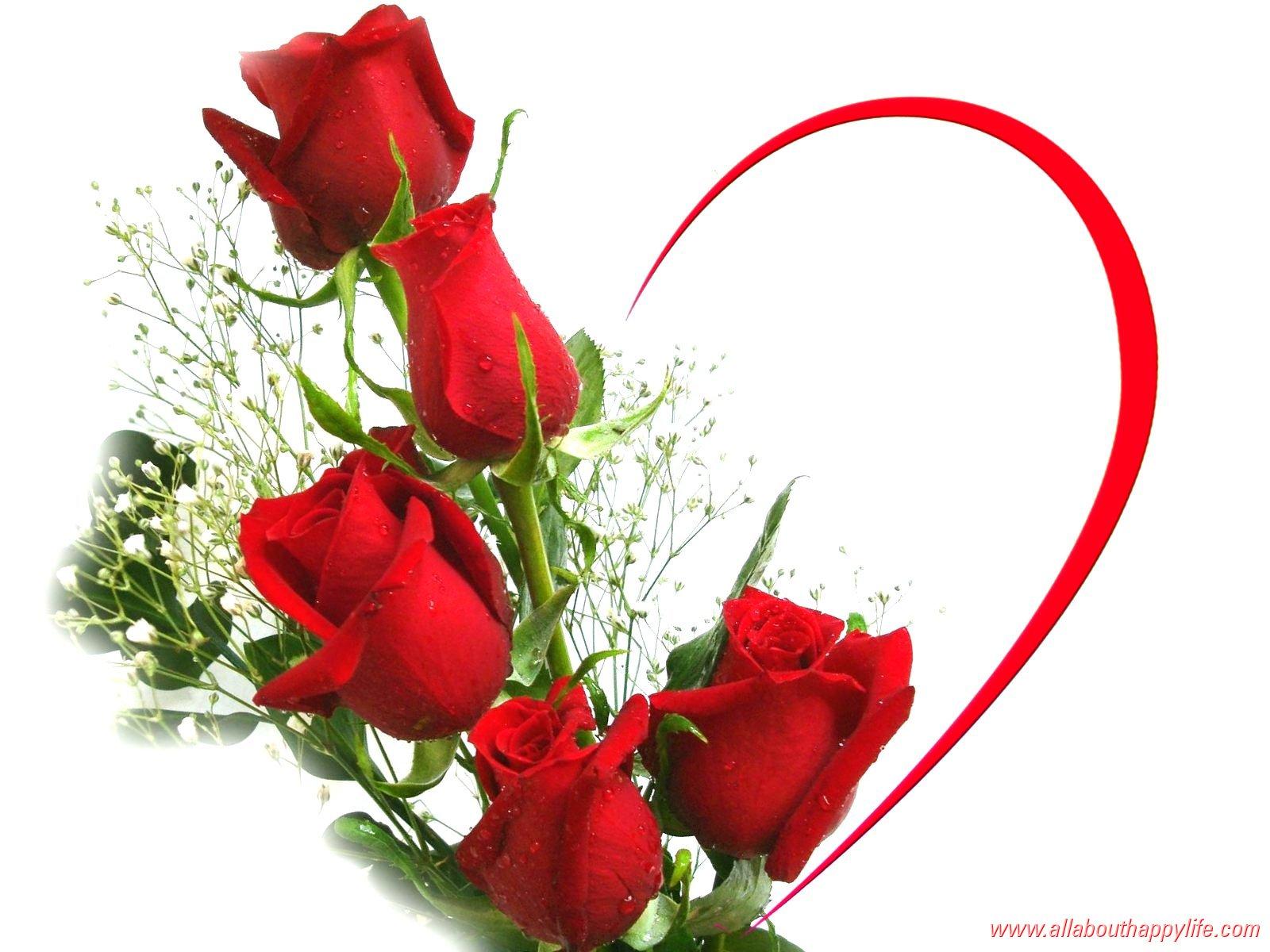       عــــــتــــــاب Love-wallpaper-red-roses_dsc03451