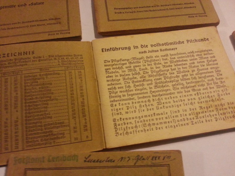 documents allemand ww2  1690272401569752171afcd20160114_081650_800x600_