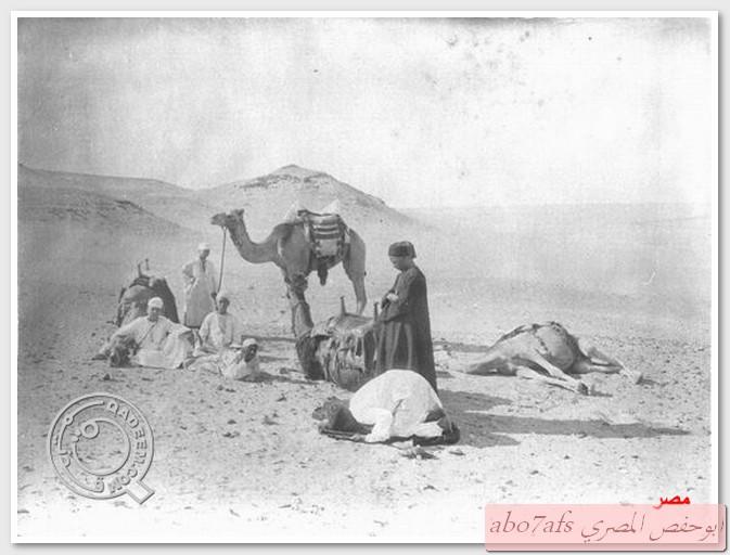 بالصور مصر 1800 م تتحدث   59458_11289696266