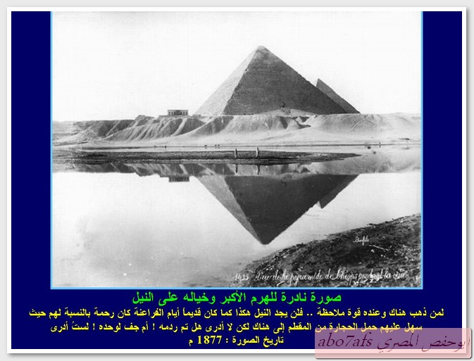 بالصور مصر 1800 م تتحدث   59458_11289788746
