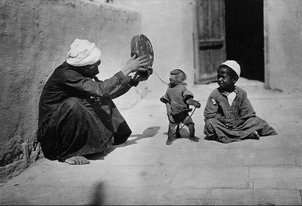 بالصور مصر 1800 م تتحدث   59458_11289935589