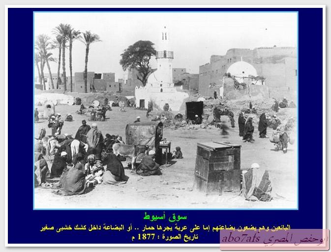 بالصور مصر 1800 م تتحدث   59458_11290126809