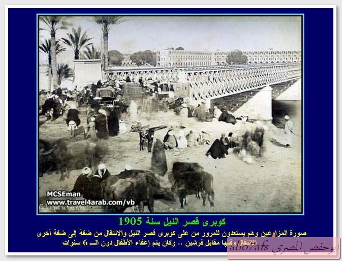 بالصور مصر 1800 م تتحدث   59458_11290301296
