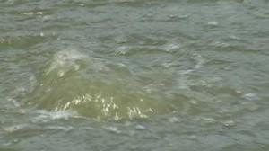 Misterioso hundimiento de Louisiana motivo de preocupación de las explosiones y la radiación Burbujas-300x168