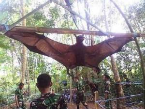 Ejercito peruano habría descubierto y capturado murciélago gigante. Muercielago-gigante-en-peru-300x225