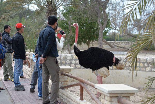 موسوعة شاملة عن المحميات الطبيعية - حصريا على منتدى واحة الإسلام 01391918027