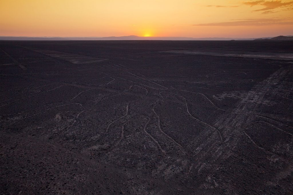 Archaeologists discover 24 new lines at Nazca Nazca_lines_tree-1024x683