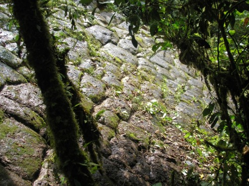 What You Need to Know About the Lost City of Giants Unearthed in Ecuador Pyramid3-500x375