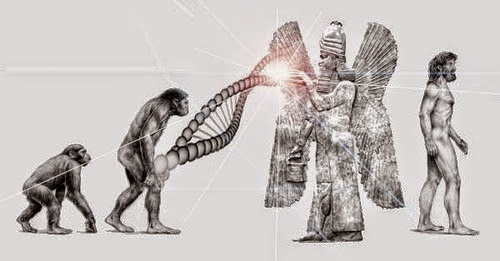 The Ancient Anunnaki and mankind's Forbidden history Mankind-Human-Species-Missing-Link-the-Anunnaki
