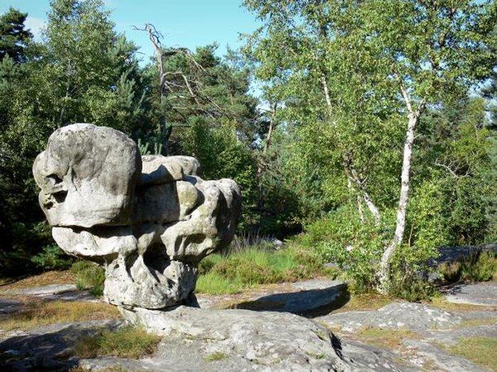 elefantes y escaleras Forestfontainebleau3