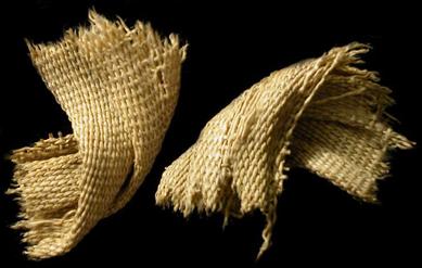 Vendajes de momias Mummywrap348b