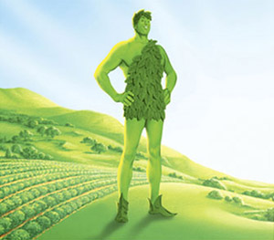 ~Sawa est là~ Geant-vert-champ