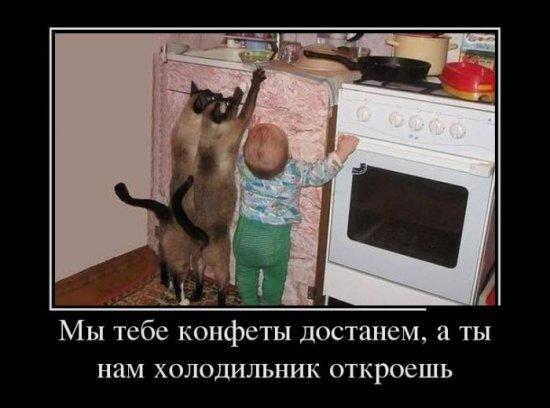 Ржу - не могу ツ Smeshnie_kartinki_137407218417072013534