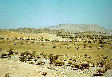 موسوعة شاملة عن المحميات الطبيعية - حصريا على منتدى واحة الإسلام Slaeal