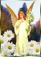 IL MONDO  DEI  ANGELI Ariel.