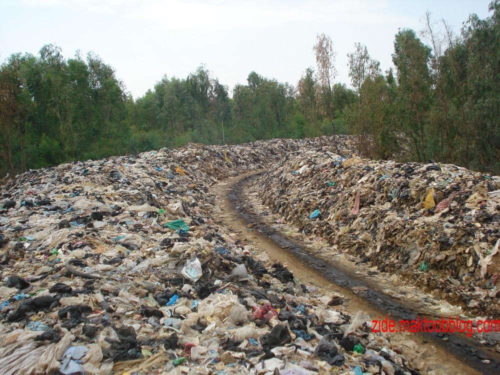 التلوث البيئي 6g1xp-projet_svt