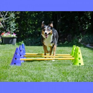 FitPAWS® - Page 2 Kit-cavaletti-dog-agility-kit