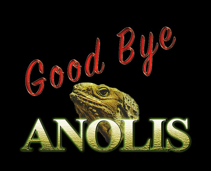 Ivo verlässt Anolis 01_2017_04_01_goodbye-anolis