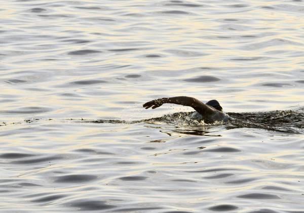 Da Cuba a Usa a nuoto, fallita impresa 49/enne australiana Fad3806eb5639be6e4718e144c6ccd37_328737