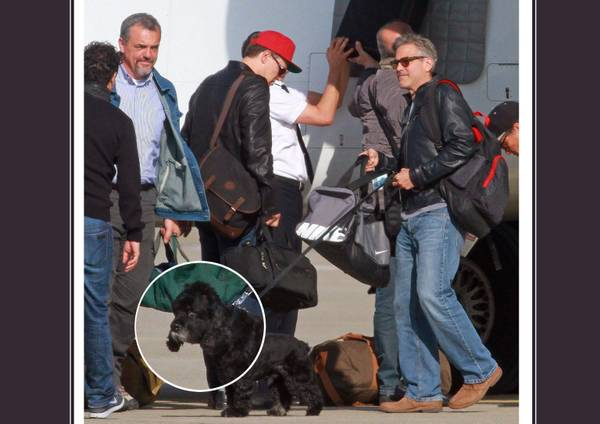 George Clooney returns to Germany and goes back to filming F6d7f247f082e9f2823bf6acc6965a78