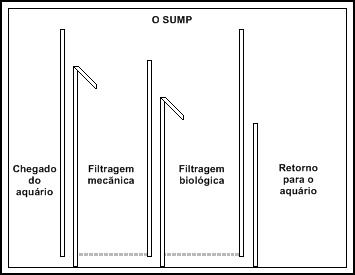 Filtro Sump para aquário Fluxo1