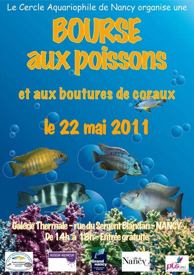 Bourse du CAN à Nancy : 22 mai 2011 Anemone-clown_1298386259-bourse-aquariophilie-cercle-aquariophile-nancy-2011