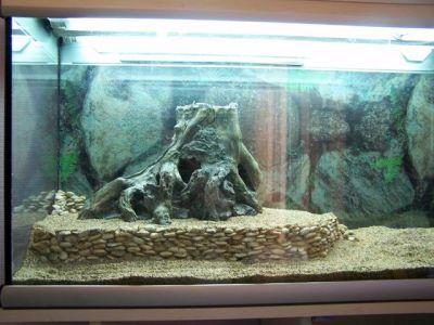 réalisation d'une terrasse rocheuse pour aquarium ou terrarium _terrasse5