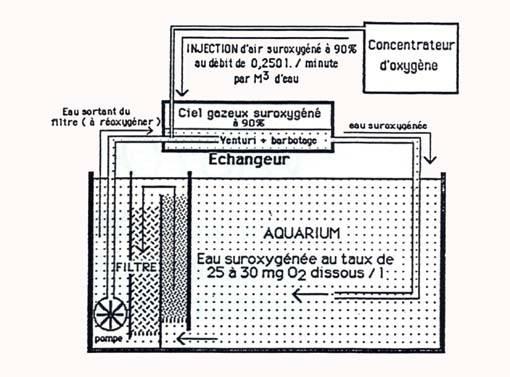 Concentrateur d'oxygène Vastox3