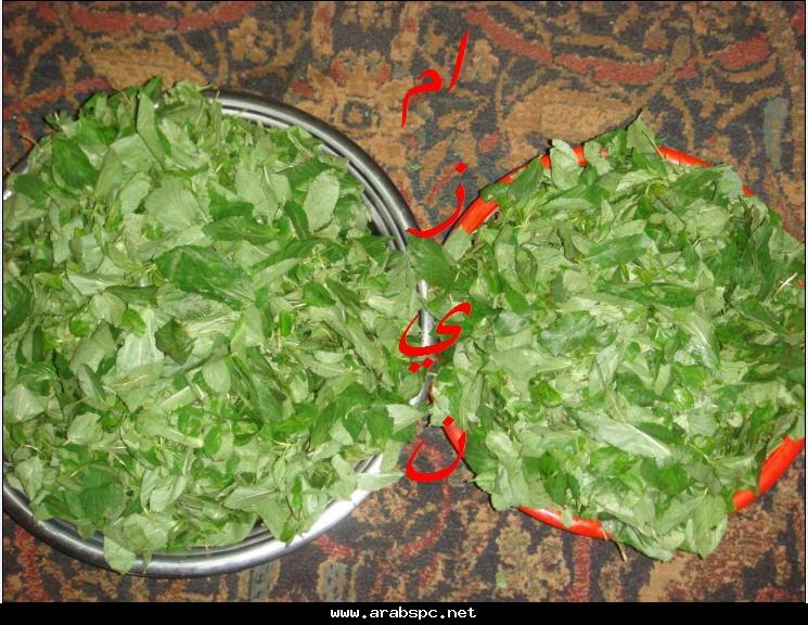 حفظ الخضروات و الفاكهة 976bb0cacb