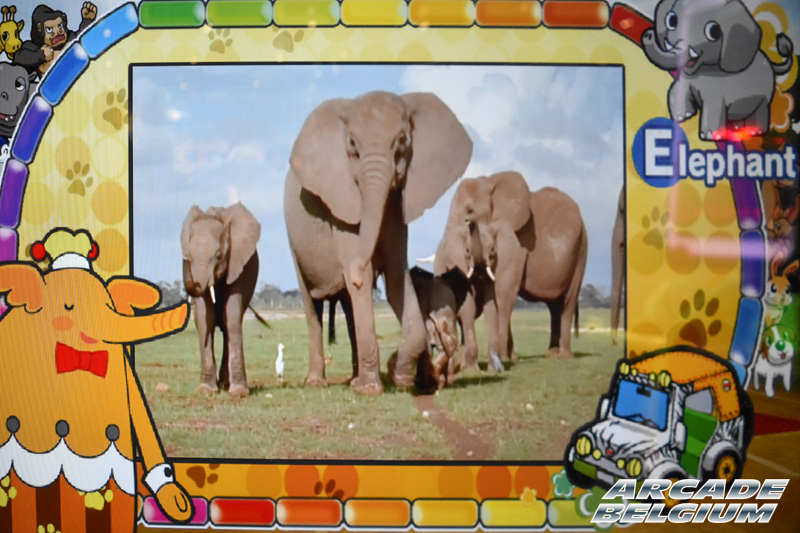Let's Go Safari Eag17_037b