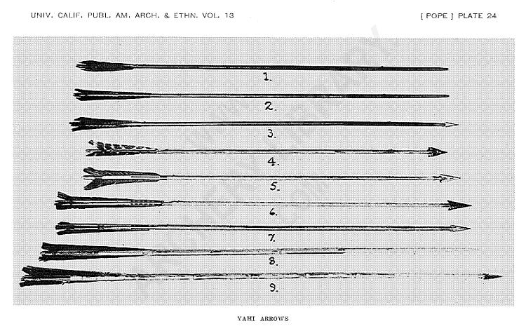 Tendones de una pieza de morcillo - Página 2 Plate24