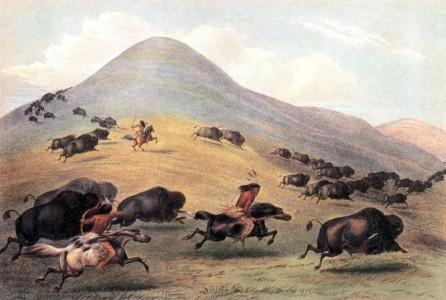 contradiction entre règles HMA et mégaventure : sur portée arc simple Catlin-chasse-bison