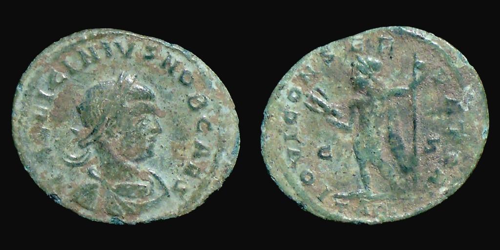 Collection Arminius 9629