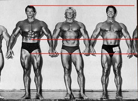¿Cuánto mide Arnold Schwarzenegger? - Altura - Real height - Página 2 Arnoldleglength