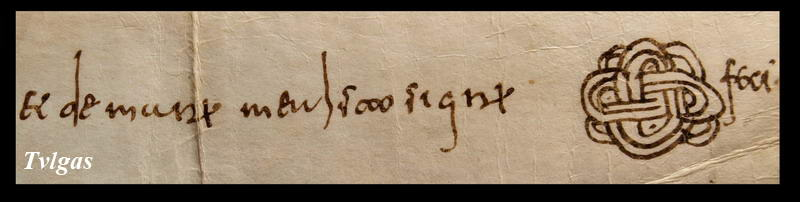 Signum Magister Signu