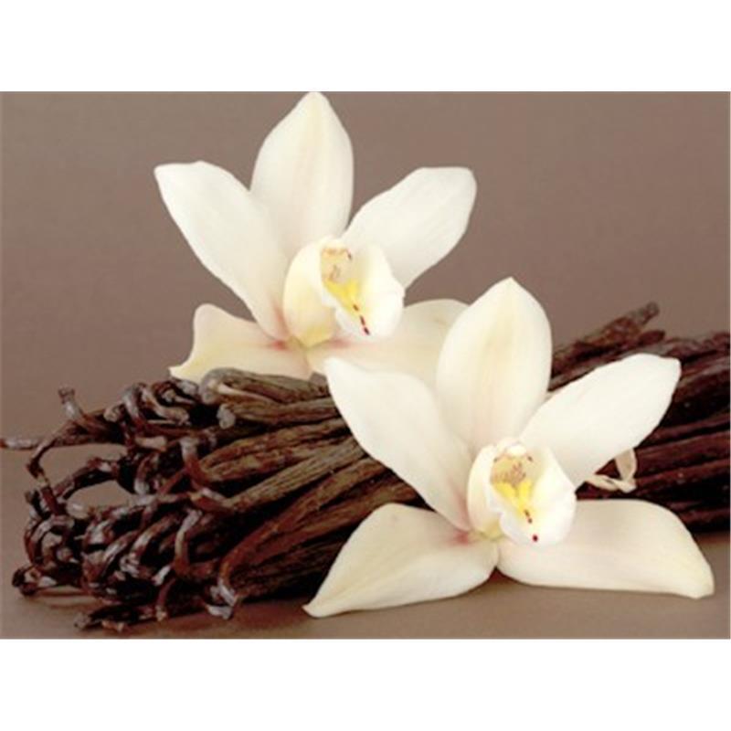 Ayurveda - tradicionalna Indijska medicina - Page 4 Esenca-vanilija