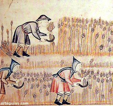 Bienvenidos al nuevo foro de apoyo a Noe #203 / 17.12.14 ~ 18.12.14 - Página 3 Agriculturacereales