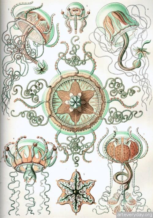 A l'Esperluette. - Page 17 19-500x709