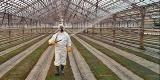 Le monde selon Monsanto Vignettenotrepain