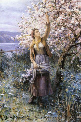 Daniel Ridgway Knight  Gathering-apple-blossoms