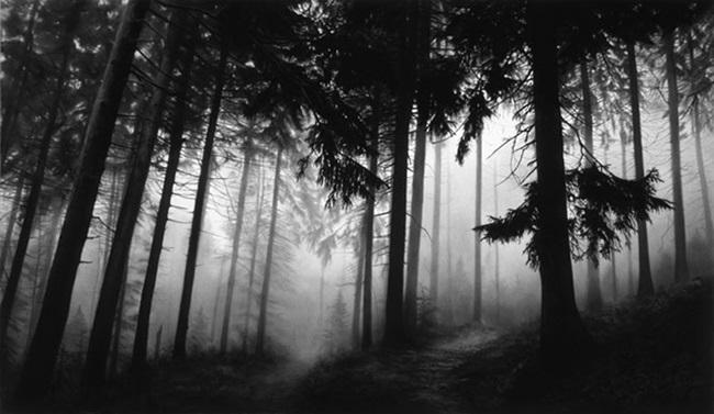 Avante para a primeira rota ! [01] Robert-longo-untitled-(fairmount-forest)