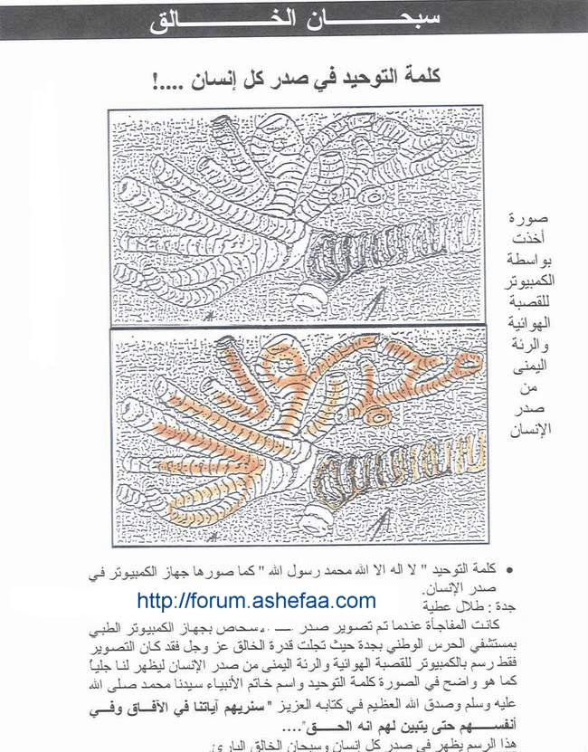 محمد رسول الله مكتوبة بصدر كل انسان شاهد هذة الصورة سبحان الله Forum.ashefaa