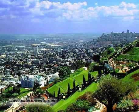 من أجمل مدن فلسطين مدينه حيفا 494bafbd00