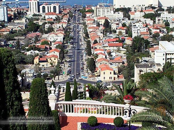 من أجمل مدن فلسطين مدينه حيفا 87be68871d