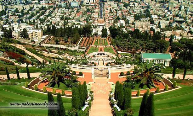 من أجمل مدن فلسطين مدينه حيفا 906caf8b84