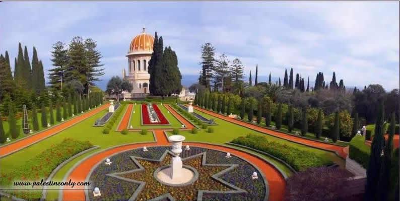 من أجمل مدن فلسطين مدينه حيفا D2f2268201