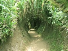 Cultural Discovery in Center 7 days-Vietnam Vinh%20moc%20tunnel