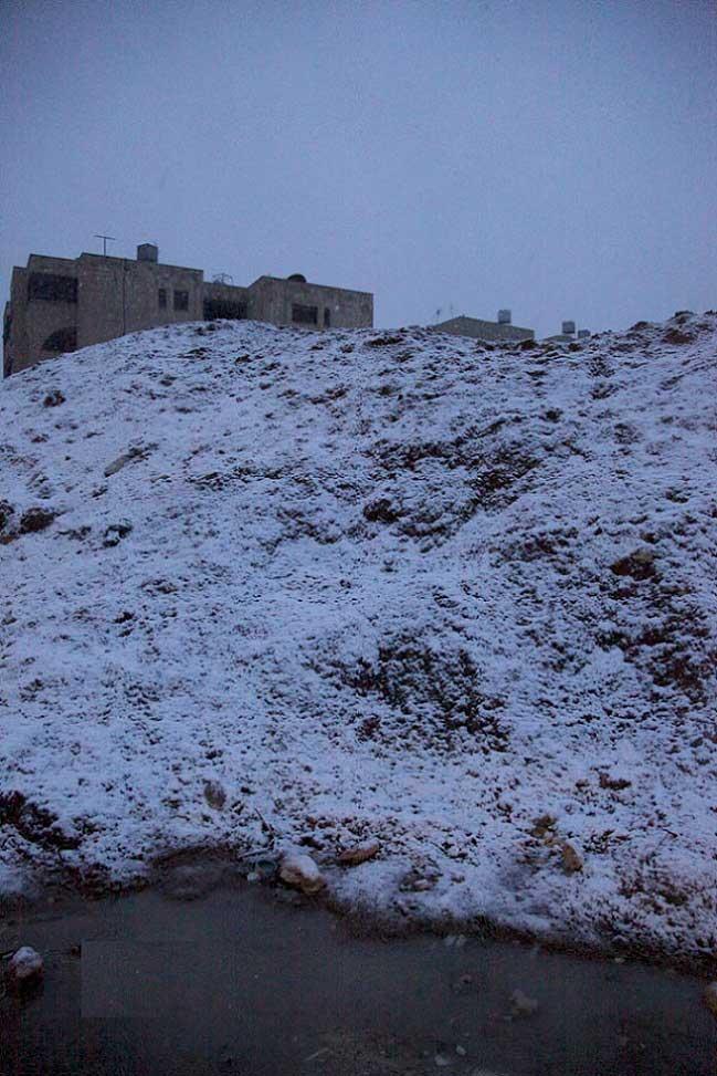 شاهدو صور الثلوج بلاردن اليوم 29\2\ 2-XHQSTE89-29022012110250