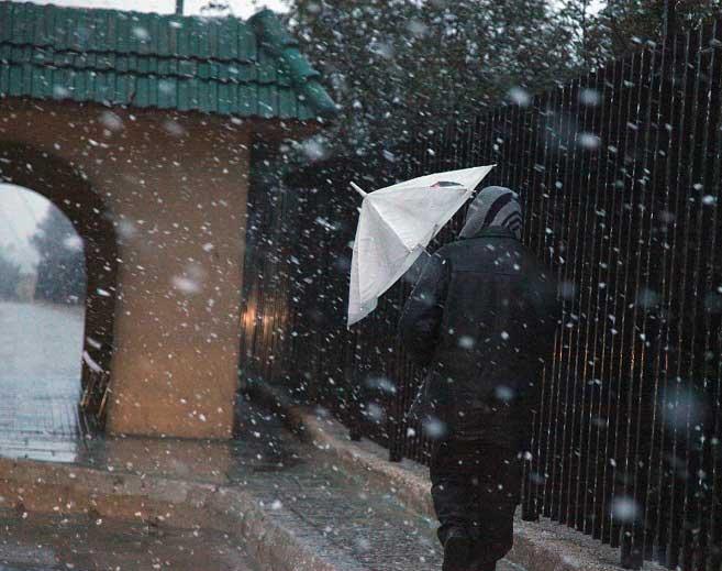 شاهدو صور الثلوج بلاردن اليوم 29\2\ 5-WPRLHQ87-29022012110234